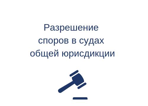 Разрешение споров в судах общей юрисдикции
